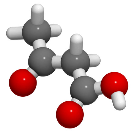 molecular model: Ketone body (acetoacetic acid), molecular model. Atoms are represented as spheres with conventional color coding: hydrogen (white), carbon (grey), oxygen (red) Stock Photo