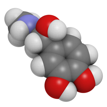 Adrenaline (epinephrine) hormone and neurotransmitter, molecular model. Atoms are represented as spheres with conventional color coding: hydrogen (white), carbon (grey), oxygen (red), nitrogen (blue) photo
