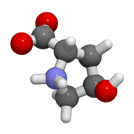 proline: Hydroxyproline (Hyp) collagen building block, molecular model. Atoms are represented as spheres with conventional color coding: hydrogen (white), carbon (grey), oxygen (red), nitrogen (blue)