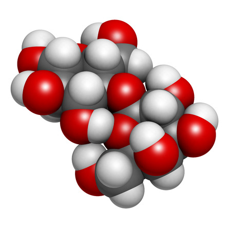 disaccharide: Lactose milk sugar molecule, chemical structure. Lactose is the disaccharide sugar found in milk. Atoms are represented as spheres with conventional color coding: hydrogen (white), carbon (grey), oxygen (red)