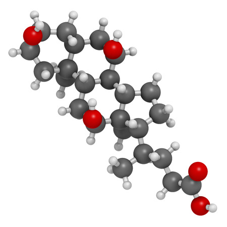 bile: Bile acid (cholic acid, cholate) molecule. Cholic acid is the main bile acid in humans. Atoms are represented as spheres with conventional color coding: hydrogen (white), carbon (grey), oxygen (red).