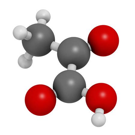 hidrogeno: El �cido pir�vico (piruvato) mol�cula. Intermedio importante en un n�mero de procesos bioqu�micos. Los �tomos se representan como esferas con codificaci�n de colores convencionales: hidr�geno (blanco), carb�n (gris), ox�geno (rojo). Foto de archivo