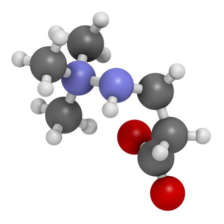 angina: Meldonium molécula de fármaco anti-isquémico. Se utiliza en el tratamiento de la angina de pecho y el infarto de miocardio. Los átomos se representan como esferas con codificación de colores convencionales: hidrógeno (blanco), carbón (gris), oxígeno (rojo), nitrógeno (azul). Foto de archivo