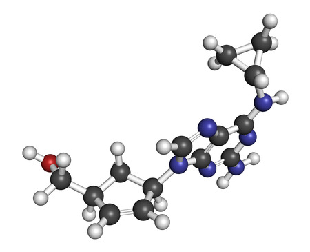 hypersensitivity: Abacavir (ABC) reverse transcriptase inhibitor drug. Used in treatment of HIV infection and AIDS. Atoms are represented as spheres with conventional color coding: hydrogen (white), carbon (grey), oxygen (red), nitrogen (blue).