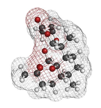 HIDROGENO: El artesunato malaria molécula de fármaco. Los átomos se representan como esferas con codificación de colores convencionales: hidrógeno (blanco), carbón (gris), oxígeno (rojo). Foto de archivo