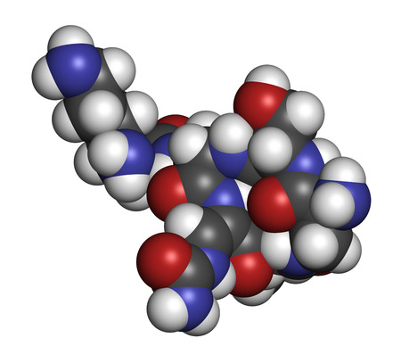 capreolus: Capreomycin antibiotic drug molecule. Atoms are represented as spheres with conventional color coding: hydrogen (white), carbon (grey), oxygen (red), nitrogen (blue).