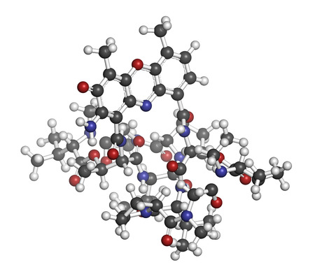 chemotherapy drug: Dactinomycin (actinomycin D) cancer chemotherapy drug molecule. Atoms are represented as spheres with conventional color coding: hydrogen (white), carbon (grey), oxygen (red), nitrogen (blue).