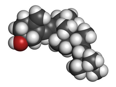 hidrogeno: Ergocalciferol (vitamina D2) mol�cula. Los �tomos se representan como esferas con codificaci�n de colores convencionales: hidr�geno (blanco), carb�n (gris), ox�geno (rojo). Foto de archivo
