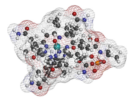 intrinsic: Hydroxocobalamin vitamin B12 molecule. Often given therapeutically in case of B12 deficiency but also to treat cyanide poisoning. Atoms are represented as spheres with conventional color coding: hydrogen (white), carbon (grey), oxygen (red), nitrogen (blu