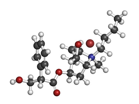 anticholinergic: Butylscopolamine (hyoscine butylbromide, scopolamine butylbromide, butylhyoscine) drug molecule. Used in treatment of abdominal and menstrual cramps. Atoms are represented as spheres with conventional color coding: hydrogen (white), carbon (grey), oxygen  Stock Photo