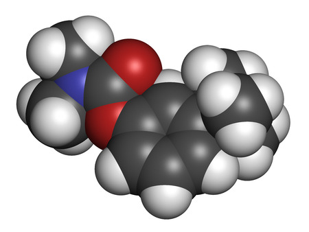 acetylcholine: Neostigmine drug molecule. Atoms are represented as spheres with conventional color coding: hydrogen (white), carbon (grey), oxygen (red), nitrogen (blue).