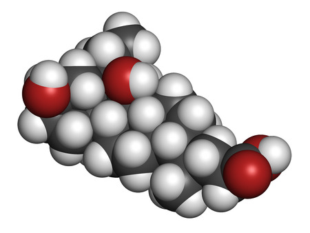 agonist: Obeticholic acid liver disease drug molecule. Agonist of farnesoid x receptor (FXR). Atoms are represented as spheres with conventional color coding: hydrogen (white), carbon (grey), oxygen (red). Stock Photo