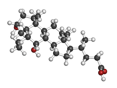 receptor: Obeticholic acid liver disease drug molecule. Agonist of farnesoid x receptor (FXR). Atoms are represented as spheres with conventional color coding: hydrogen (white), carbon (grey), oxygen (red). Stock Photo