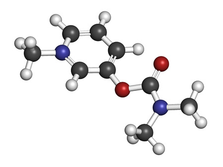 acetylcholine: Pyridostigmine cholinesterase drug molecule. Used in treatment of myasthenia gravis and as antidote to some nerve agents. Atoms are represented as spheres with conventional color coding: hydrogen (white), carbon (grey), oxygen (red), nitrogen (blue). Stock Photo