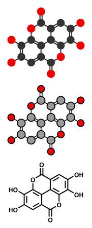 supplement: Ellagic acid dietary supplement molecule. Stylized 2D renderings and conventional skeletal formula.