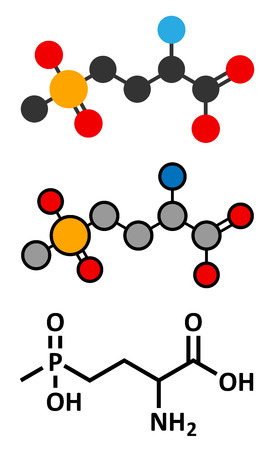 canola: Glufosinate (phosphinothricin) nonselective herbicide molecule. Transgenic (GMO) crops have been created that are resistant to glufosinate. Stylized 2D renderings and conventional skeletal formula.