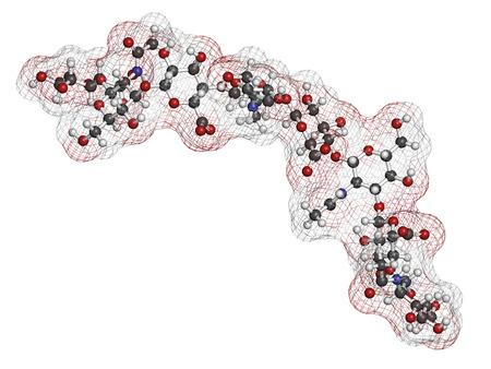Hyaluronan (hyaluronzuur, hyaluronate) glycosaminoglycan molecuul, kort fragment. Deel van de extracellulaire matrix. Gebruikt als tumor marker. Gebruikt bij de behandeling van osteoartritis en als cosmetische vulstof om rimpels te behandelen. Atomen getoond als kleurgecodeerde bollen +