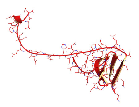 recombinant: Hirudin protein molecule. Anticoagulant protein from leeches that prevents blood clotting by inhibiting thrombin. Topically used in treatment of hematoma. Cartoon + line model.