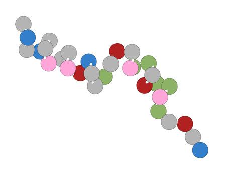 リラグルチド ペプチド創薬分子。糖尿病や肥満の治療に使用されるグルカゴン様ペプチド 1 受容体のアゴニスト。ビーズ (各ビードはアミノ酸に相