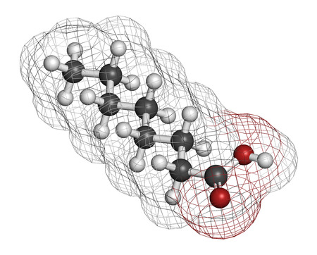 food supplement: Caprylic (octanoic) acid. Medium-chain fatty acid, used as antimicrobial agent, food supplement and chemical intermediate. Atoms are represented as spheres with conventional color coding: hydrogen (white), carbon (grey), oxygen (red).