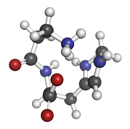 chelation: Carnosine molecule. Has antioxidant properties; commonly used in food supplements. Atoms are represented as spheres with conventional color coding: hydrogen (white), carbon (grey), oxygen (red), nitrogen (blue). Stock Photo