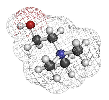 ammonium: Choline essential nutrient molecule. Atoms are represented as spheres with conventional color coding: hydrogen (white), carbon (grey), oxygen (red), nitrogen (blue).