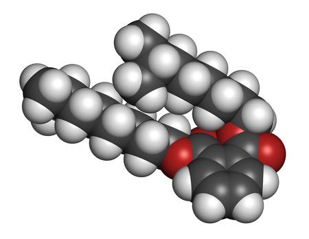 hidr�geno: Ftalato de diisononilo (DINP) mol�cula de plastificante. Los �tomos se representan como esferas con codificaci�n de colores convencionales: hidr�geno (blanco), carb�n (gris), ox�geno (rojo). Foto de archivo