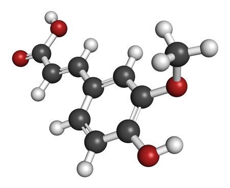 HIDROGENO: El ácido ferúlico molécula antioxidante a base de hierbas. Los átomos se representan como esferas con codificación de colores convencionales: hidrógeno (blanco), carbón (gris), oxígeno (rojo). Foto de archivo