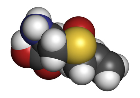 alliaceae: Alliin garlic molecule. Atoms are represented as spheres with conventional color coding: hydrogen (white), carbon (grey), oxygen (red), sulfur (yellow). Stock Photo