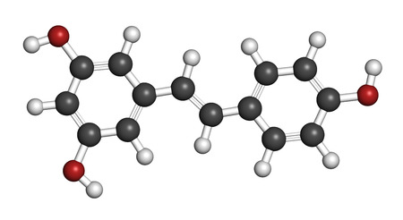 lifespan: Resveratrol molecule. Present in many plants, including grapes and raspberries. Believed to have a number of positive health effects. Atoms are represented as spheres with conventional color coding: hydrogen (white), carbon (grey), oxygen (red). Stock Photo