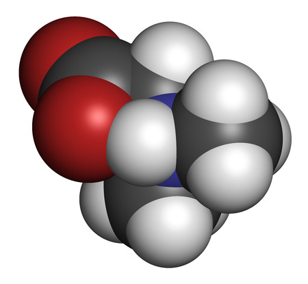 enhancing: Dimethylglycine (DMG) molecule. Methylated derivative of glycine, used in performance enhancing nutritional supplements. Atoms are represented as spheres with conventional color coding: hydrogen (white), carbon (grey), oxygen (red), nitrogen (blue). Stock Photo