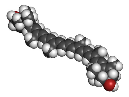 macula: Lutein carotenoid molecule. Nutrient present in green leafy vegetables such as spinach and kale. Atoms are represented as spheres with conventional color coding: hydrogen (white), carbon (grey), oxygen (red).