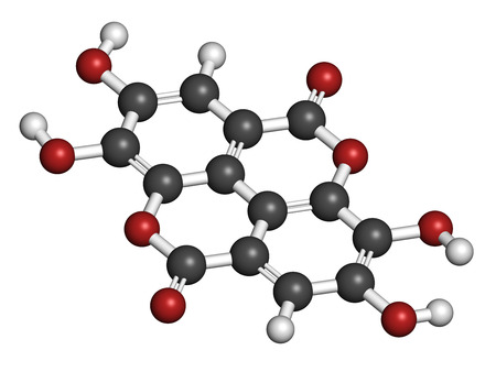 vegetable carbon: Ellagic acid dietary supplement molecule. Atoms are represented as spheres with conventional color coding: hydrogen (white), carbon (grey), oxygen (red). Stock Photo