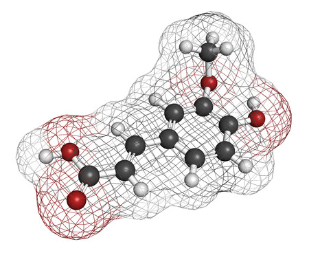 yacon: Ferulic acid herbal antioxidant molecule. Atoms are represented as spheres with conventional color coding: hydrogen (white), carbon (grey), oxygen (red).