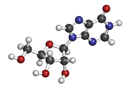 triphosphate: Inosine nucleoside molecule. Found in tRNA. Used as fitness nutritional supplement. Atoms are represented as spheres with conventional color coding: hydrogen (white), carbon (grey), oxygen (red), nitrogen (blue). Stock Photo
