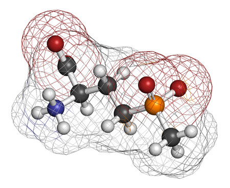 Glufosinate (phosphinothricin) nonselective herbicide molecule. Transgenic (GMO) crops have been created that are resistant to glufosinate. Atoms are represented as spheres with conventional color coding: hydrogen (white), carbon (grey), oxygen (red), nit Stock Photo