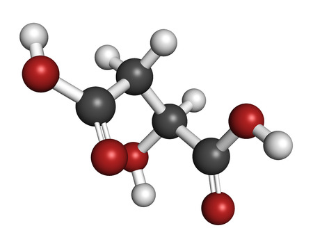 Malic acid fruit acid molecule. Present in apples, grapes, rhubarb, etc and contributes to the sour taste of these. Atoms are represented as spheres with conventional color coding: hydrogen (white), carbon (grey), oxygen (red).