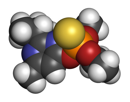 acetylcholine: Diazinon (dimpylate) organophosphate insecticide molecule.