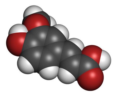 hidr�geno: El �cido fer�lico mol�cula antioxidante a base de hierbas. Los �tomos se representan como esferas con codificaci�n de colores convencionales: hidr�geno (blanco), carb�n (gris), ox�geno (rojo). Foto de archivo