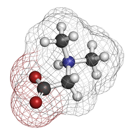 methyl: Dimethylglycine (DMG) molecule. Methylated derivative of glycine, used in performance enhancing nutritional supplements. Atoms are represented as spheres with conventional color coding: hydrogen (white), carbon (grey), oxygen (red), nitrogen (blue). Stock Photo