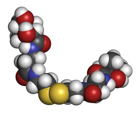 hidrogeno: Pantetina (dim�rica vitamina B5) mol�cula. Se utiliza en los suplementos diet�ticos. Los �tomos se representan como esferas con codificaci�n de colores convencionales: hidr�geno (blanco), carb�n (gris), ox�geno (rojo), nitr�geno (azul), azufre (amarillo).