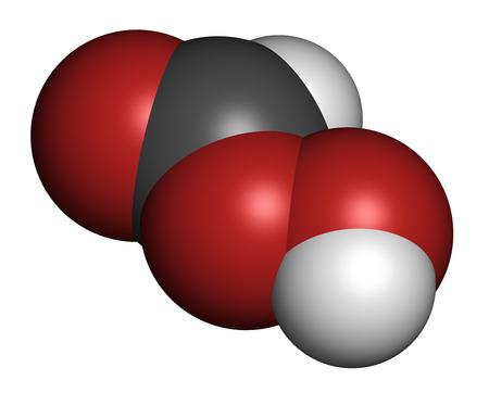 desinfectante: �cido perf�rmico (PFA) mol�cula desinfectante. Se utiliza como desinfectante y esterilizador. Los �tomos se representan como esferas con codificaci�n de colores convencionales: hidr�geno (blanco), carb�n (gris), ox�geno (rojo).