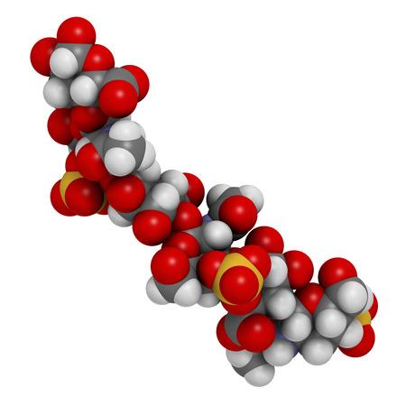 osteoarthritis: Sulfato de condroitina (fragmento corto). Componente importante del cart�lago. Se utiliza como suplemento diet�tico en el tratamiento de la osteoartritis. Los �tomos se representan como esferas con codificaci�n de color convencional.