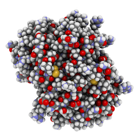 cytokine: Platelet factor 4 (PF-4) chemokine protein. Atoms are represented as spheres with conventional color coding. Stock Photo