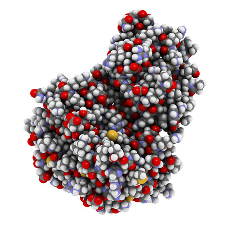 janus: Janus kinase 1 protein. Part of JAK-STAT signalling pathway and drug target. Atoms are represented as spheres with conventional color coding.