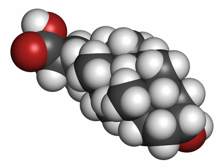 bile: Deoxycholic acid bile acid molecule. Also used as drug. Atoms are represented as spheres with conventional color coding: hydrogen (white), carbon (grey), oxygen (red).