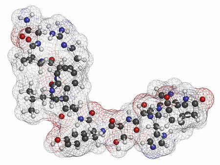 agonist: Triptorelin gonadotropin releasing hormone agonist drug molecule. Atoms are represented as spheres with conventional color coding: hydrogen (white), carbon (grey), nitrogen (blue), oxygen (red).