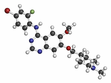 endothelial: Vandetanib cancer drug molecule (kinase inhibitor). Atoms are represented as spheres with conventional color coding: hydrogen (white), carbon (grey), oxygen (red), nitrogen (blue), bromine (brown), fluorine (light green).