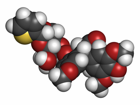 chemotherapeutic: Teniposide cancer drug molecule (topoisomerase II inhibitor). Atoms are represented as spheres with conventional color coding: hydrogen (white), carbon (grey), oxygen (red), sulfur (yellow).