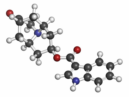 nausea: Dolasetron nausea and vomiting drug molecule. Atoms are represented as spheres with conventional color coding: hydrogen (white), carbon (grey), oxygen (red), nitrogen (blue).